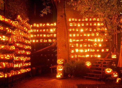 Some fantastic Halloween Pumpkins